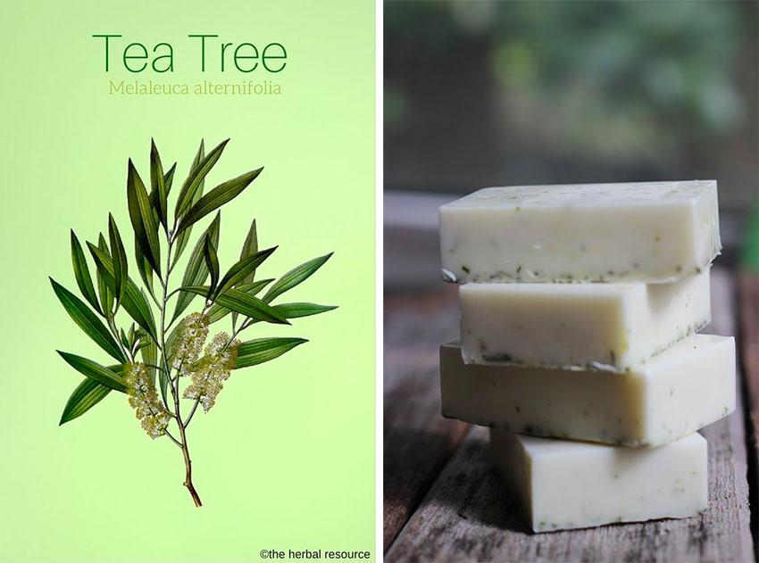 profumi per la casa, i benefici dell'aromaterapia