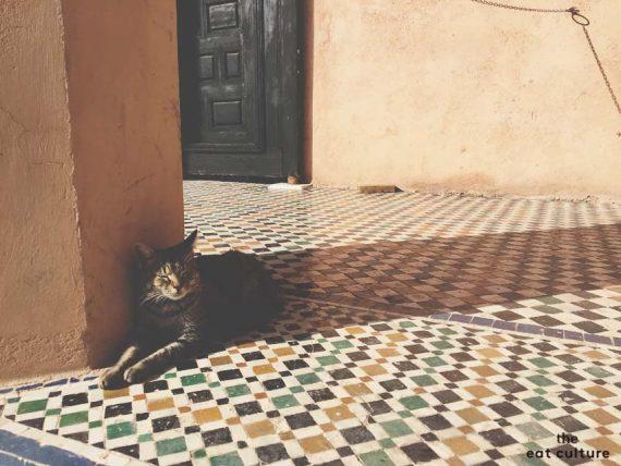 Ritorno da Marrakech. I sapori del Caffeè des Epices.