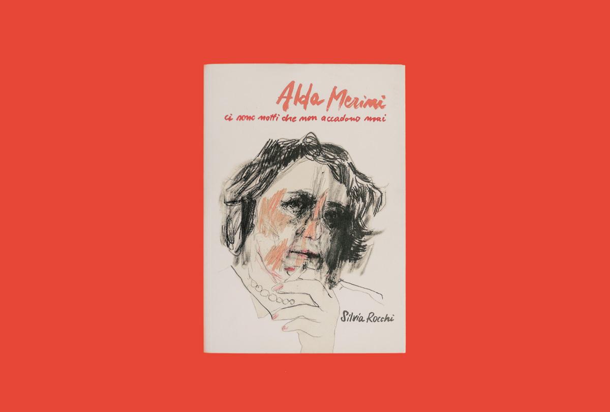 Alda Merini ci sono notti che non accadono mai. Libro illustrato da Silvia Rocchi.