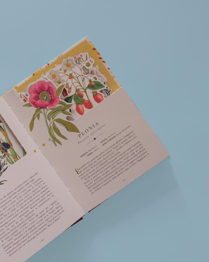 I fiori: un libro che si trasforma in un'opera d'arte