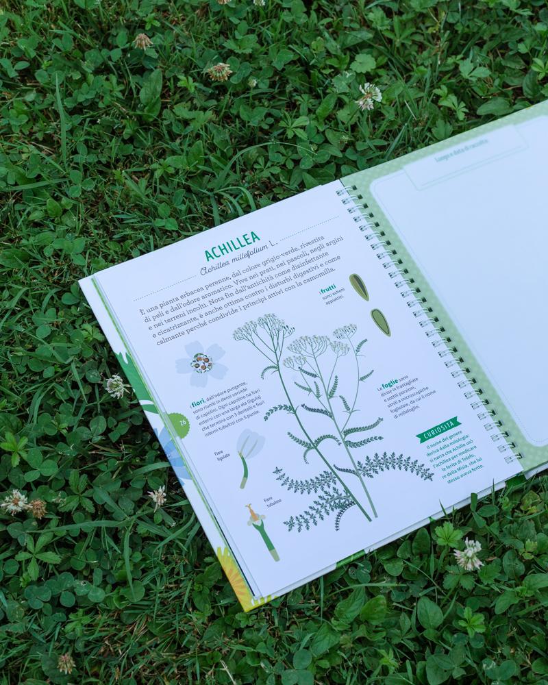 tra foglie e fogli il mio erbario libro